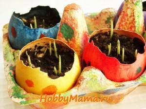 Пасхальный декор с детьми Проращивание ячменя