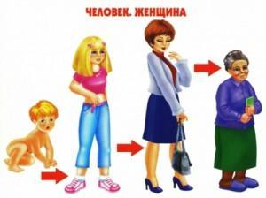 Как растет живое Человек Женщина
