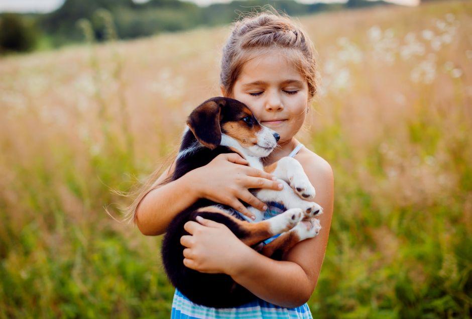 Чем полезны животные детям